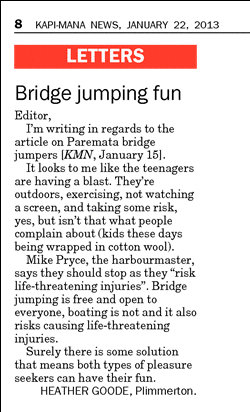 bridge_jumping_fun