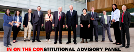 constitutional-advisory-panel-in-on-the