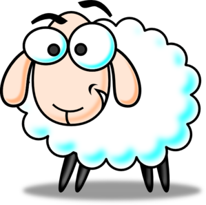 funny-sheep-md