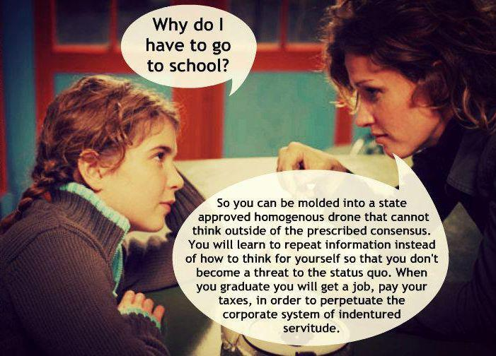 why we need to change education Andy powell, ceo of independent education foundation edge, sets out his vision for the future of education the nation needs an education system that excites and stimulates children, providing them with the learning they need - and deserve - to fulfill their potential.