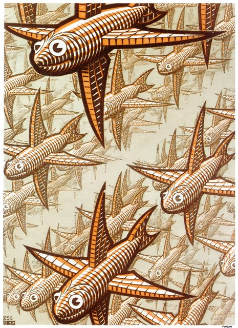 mars fish