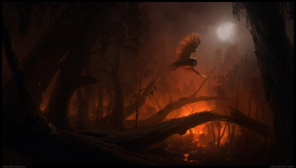 1039x591_3718_Fire_flight_sorry_had_to_2d_illustration_fire_bird_forest_night_owl_smoke_picture_image_digital_art (1)