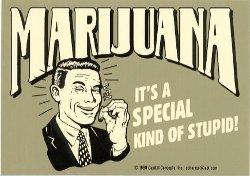20110916-marijuana-stupid