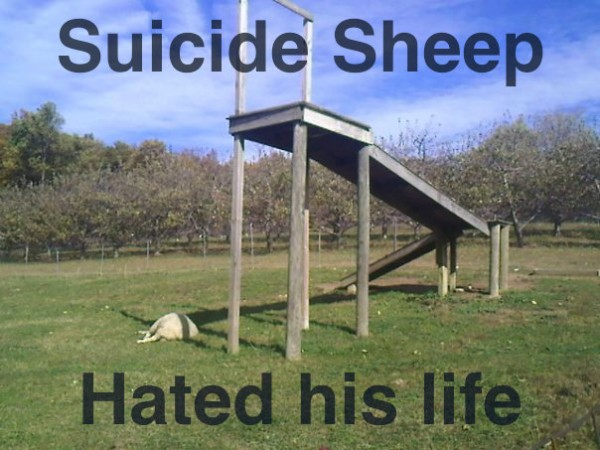 Suicide_daf312_529208