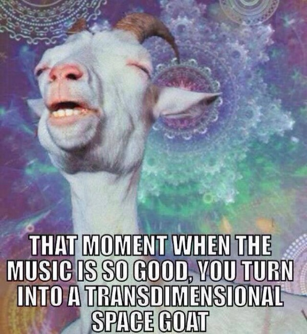 funny-lol-music-is-so-good-transdimensional-space-goat-humor-joke-meme-photo-picture