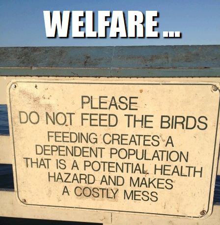 please_do_not_feed_the_birds