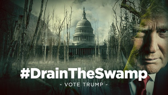 trump-drain-the-swamp